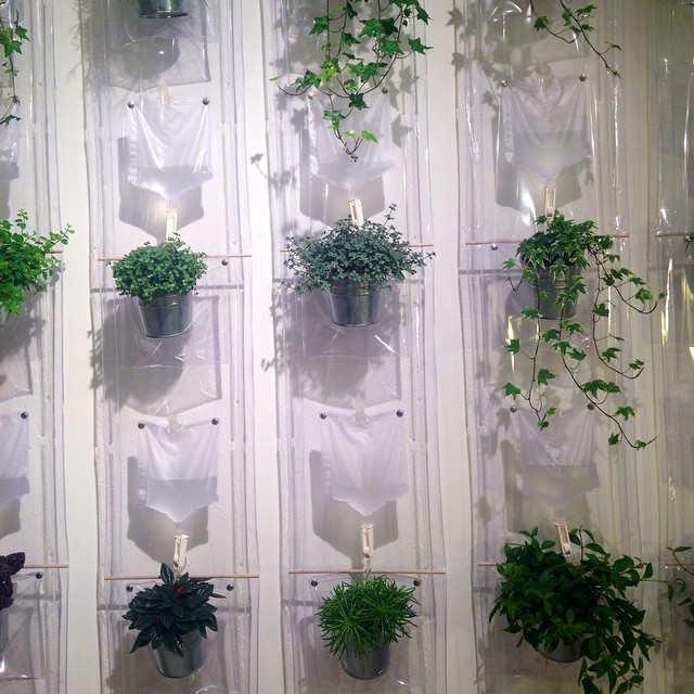 Swung by the Driade showroom. Liked the rather clinical planting solution #productdesign #Milan #Driade