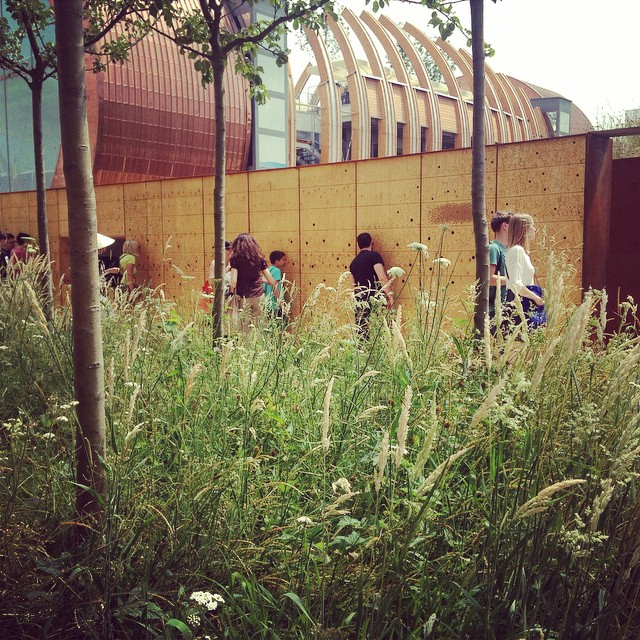 Even the queue was beautiful with sounds of British countryside #bees #British #Expo #Milan #Pavilion